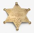 Brass Marshall Badge