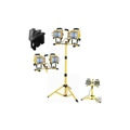 1000 Watt Tripod Halogen Lighting Stand Set
