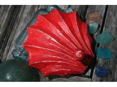 Sea Shell Door Hook Red Coastal 6 Coastal Decor