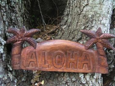 Welcome Sign Aloha W Palm Trees Island Home Decor