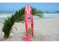 Surfer Girl Surf Sign W Fin 40 Surfing Decor