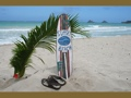 Sunset Beach Surf Sign W Fin 40 Surfing Decor