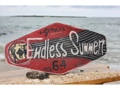 Endless Summer Genuine 1964 Surfing Wood Sign 24