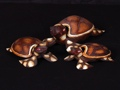 Set Of 3 Turtles Keepsake Boxes Beach Decor