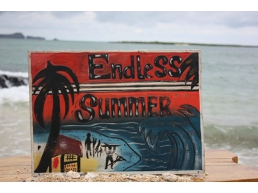 Endless Summer Carved Painted 20 Relief Surf Decor