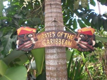 Pirates Of The Caribbean Pirate Sign 24 Pirate Decor