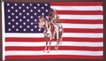 3 x 5 Horse & Indian USA Flag