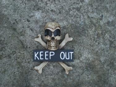 Welcome Skull And Bones Sign Cross Bones Decor
