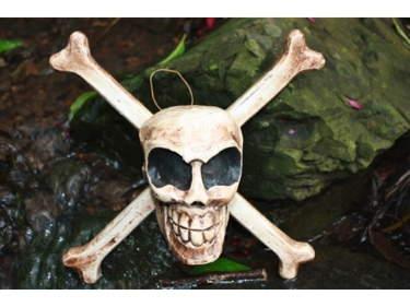 Skull And Bones Hanging Sign Cross Bones Decor