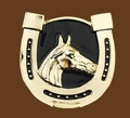 Horsehead-Horseshoe Belt buckle 3 x 3