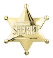 Sheriff Badge Pin - Gold