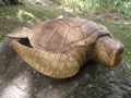 Carved Hawaiian Turtle Honu 20 In Tropical Decor